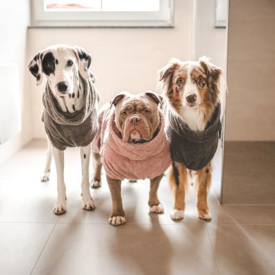 Hundebademäntel BIO