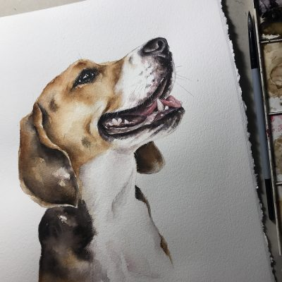 Hundeportrait in Aquarell